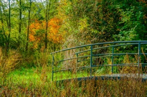 Europagarten i. Herbst 05-10-2015